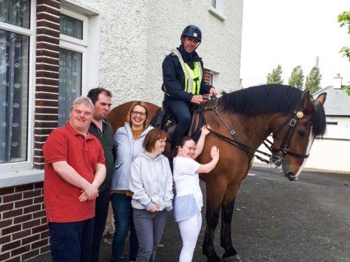 Garda Horse visits Cherrygarth